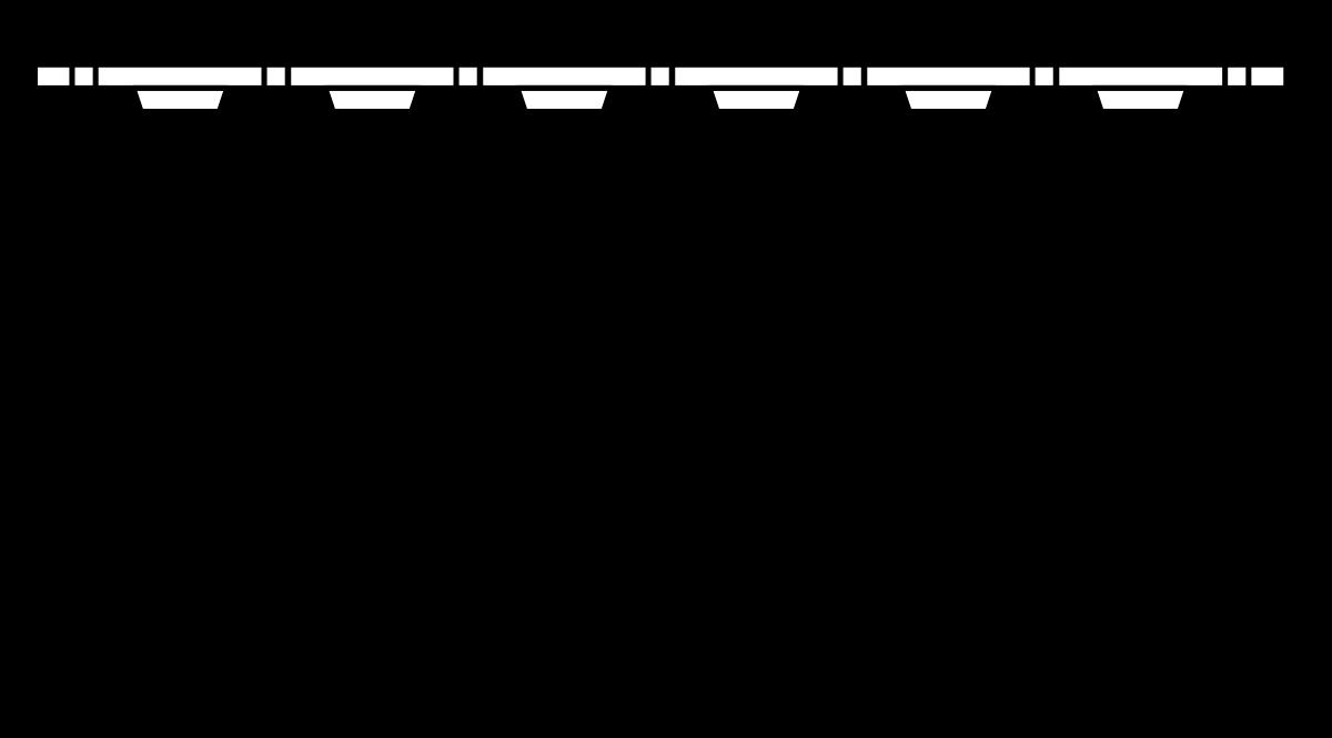 BDN Collated Screws - Bugle Head – Coarse Thread (32mm)